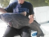 Lake-Allatoona-Catfish-8