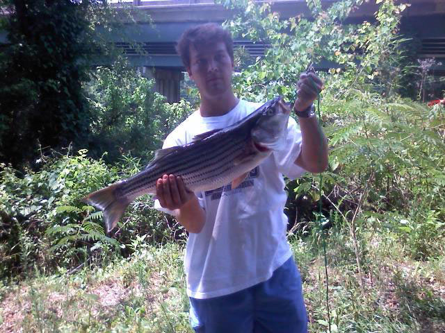 etowah-river-striper-3
