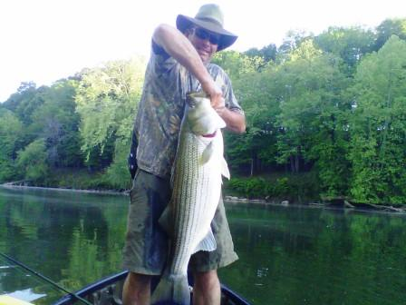 etowah-river-striper-7