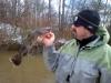 coosa-river-catfish-1