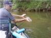 coosa-river-catfish-4