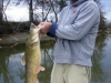 coosa-river-catfish-5