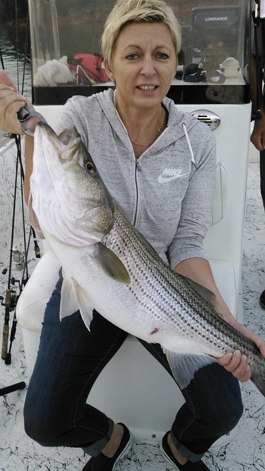 Allatoona-Striped-Bass-10
