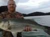 Allatoona-Striped-Bass-14