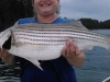 Allatoona-Striped-Bass-19