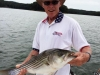 Etowah-River-Stripers-3